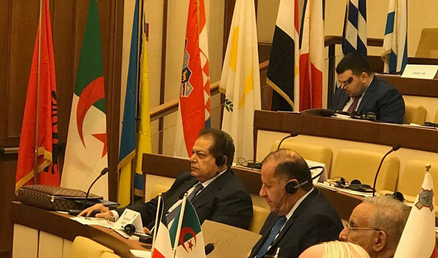 abou el enein at the parliamentary assembly of the mediterranean